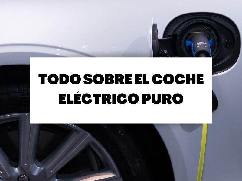Descubre cómo es un coche eléctrico puro
